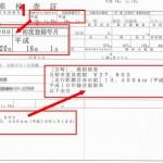 Japanese roadworthiness test certificate - called Shaken in Japanese