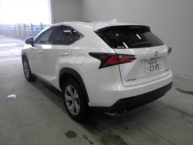 2014 Lexus NX auction find